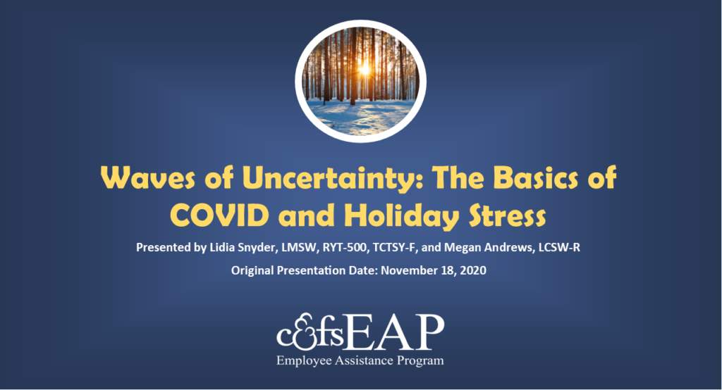 Waves of Uncertainty: the basics of COVID and holiday stress